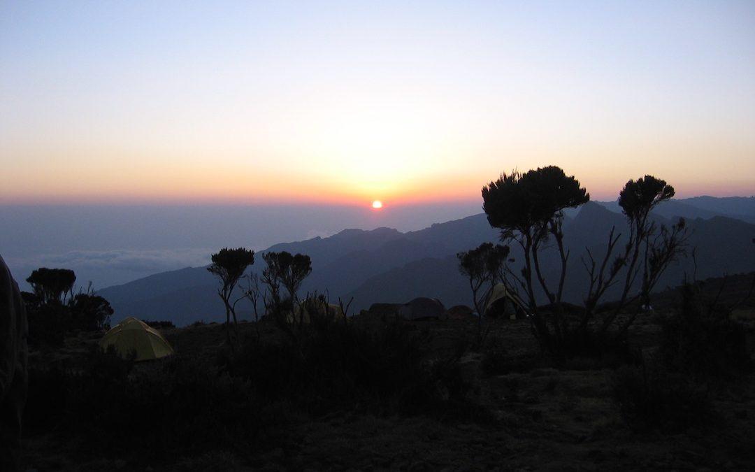 Africa / Kilimanjaro 2008